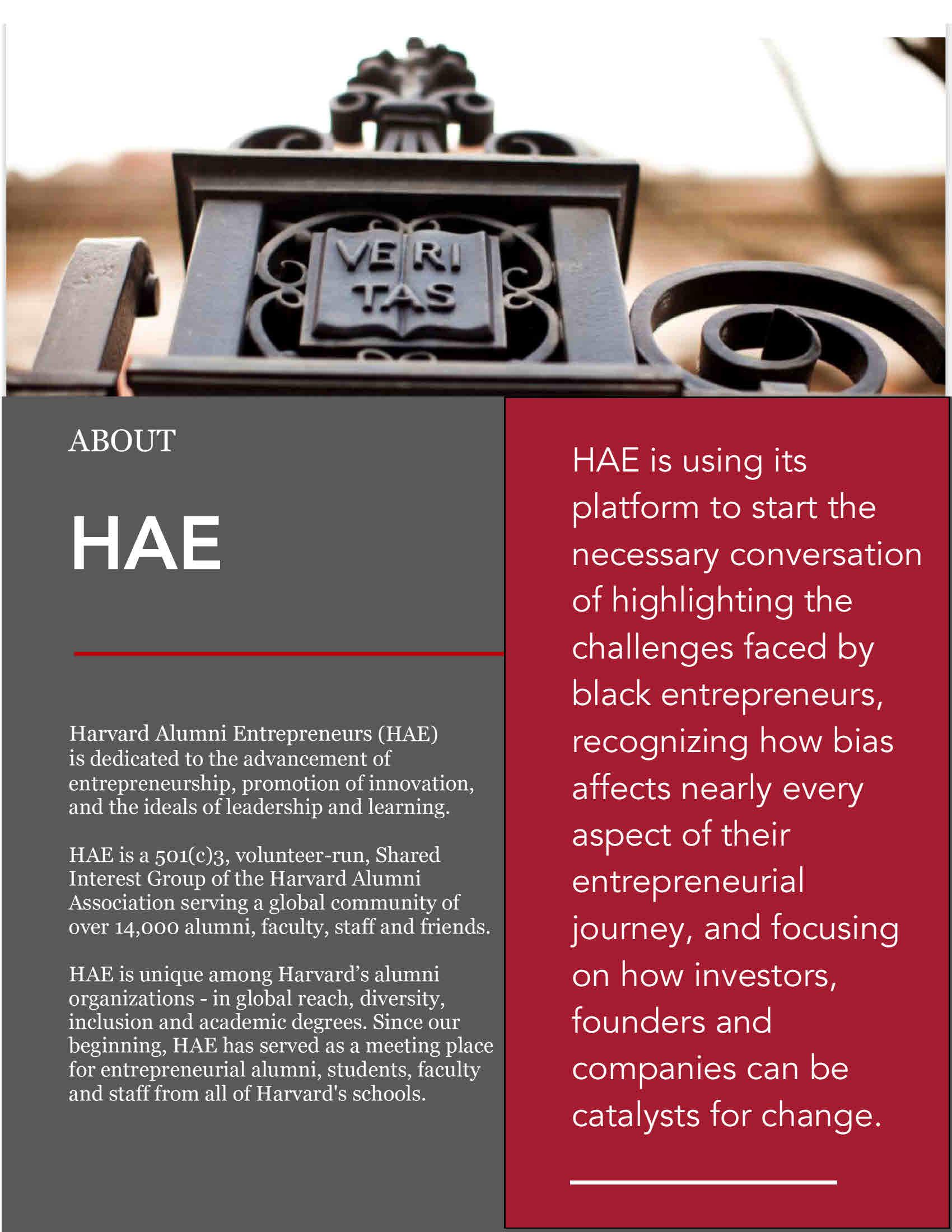 hae-advancing-diversity_overview_september-2020--3-